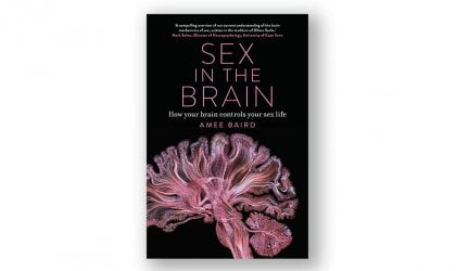 Our largest sexual organ: Amee Baird's 'Sex in the Brain'. Image of 'Sex in the Brain'
