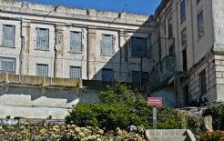 Gardening at Alcatraz. Alcatraz