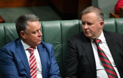 Image of Joel Fitzgibbon and Anthony Albanese