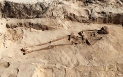 One of the skeletons recently unearthed on Beacon Island. Photo courtesy of Shipwrecks of the Roaring 40s. © Paul Bourke