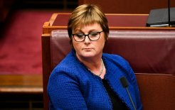 Image of Defence Minister Linda Reynolds during Question Time in the Senate yesterday