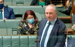 Image of Deputy Prime Minister Barnaby Joyce in Question Time today. Image via ABC News