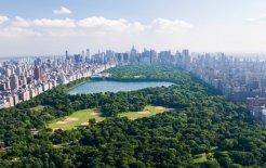 A rapscallian's resort, Central Park. © Cameron Davidson / Corbis